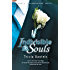 Indivisible Souls: Book 3 of the Bound4Ireland Series
