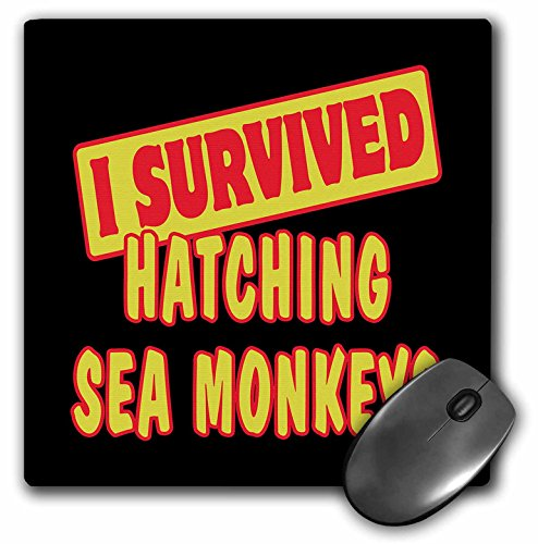 3dRose Dooni Designs Survive Sayings - I Survived Hatching Sea Monkeys Survial Pride And Humor Design - MousePad (mp_117997_1)