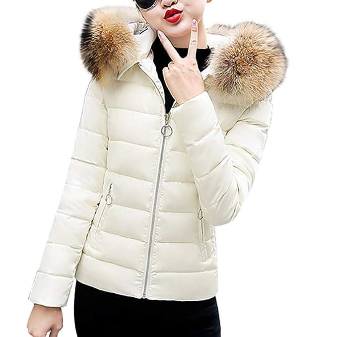 Abrigos de otoño Invierno, Dragon868 más Reciente Moda Mujeres jóvenes de pie Cuello Grueso Caliente Chaquetas Delgadas Abrigos: Amazon.es: Ropa y ...