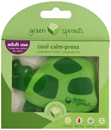 green sprouts Cool Press Turtle