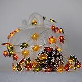 Impress Life Christmas Decor String Lights, 10ft