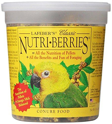 Berry Bird Food (Lafeber Company Nutri-Berries Conure Pet Food, 12-Ounce)