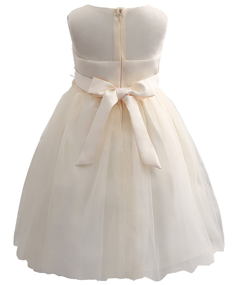 a259d0fbeeb Amazon.com  Flower Girl Evening Dresses Cute Kids Lace Pageant Ball Gowns   Clothing