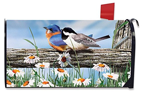 Spring Mailbox Cover - Briarwood Lane Spring Break Birds Mailbox Cover Bluebird Chickadee Standard