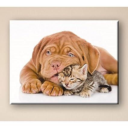 Deco Soon Cuadro como perros y gatos
