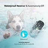 Dog Training Collar - Rechargeable Dog Shock Collar w/3 Training Modes, Beep, Vibration and Shock, 100% Waterproof Training Collar, Up to 1000Ft Remote Range, 0~99 Shock Levels Dog Training Set