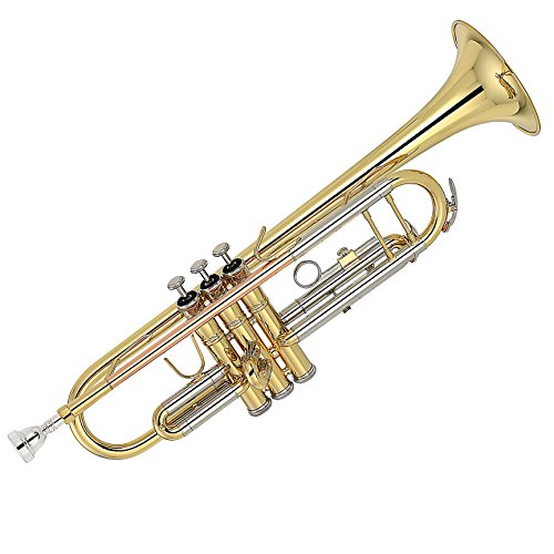 Kaizer Trumpet B Flat Bb 2000 Series Gold Lacquer Includes Case Mouthpiece and Accessories TRP-2000LQRC