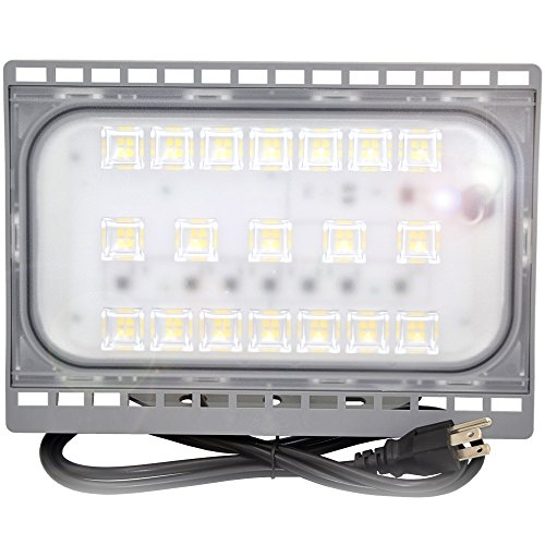 50W Outdoor LED Flood Light,500 Watt incandescent bulb Equivalent,Flood lamp for Garage,Garden,Lawn and Yard 120v 5000 lumens,5000K-5500k Daylight White,IP65 Waterproof