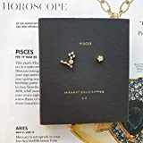 Pisces Constellation Earrings 14K Gold dipped Zodiac stud cz earrings birthday earring gift box zodiac cz studs