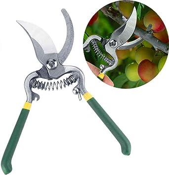 Podadera jardín herramientas jardinería plantas tijera Branch Pruners fruta árbol Bonsai jardinería podar Pruners Fácil: Amazon.es: Bricolaje y herramientas