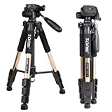 """Zomei Q111 Camera Tripod Lightweight with 1/4"""" Quick Release Plate for Digital SLR Canon Nikon Sony Olympus Samsung etc.,Champagne"""