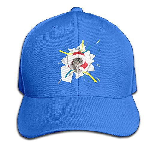 Meowy Cat Christmas Snapback Sandwich Cap RoyalBlue Baseball Cap Hats Adjustable Peaked Trucker Cap