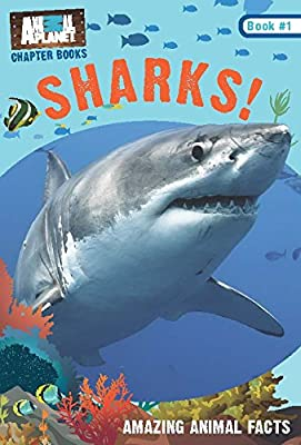 Sharks! (Animal Planet Chapter Books #1): Volume 1