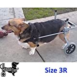 Dog Wheelchair for Dog 3-99 lbs. By Huggiecart. 8 Sizes to Select to Fit Your Dog (3R-Small Regular 20-40 lbs)