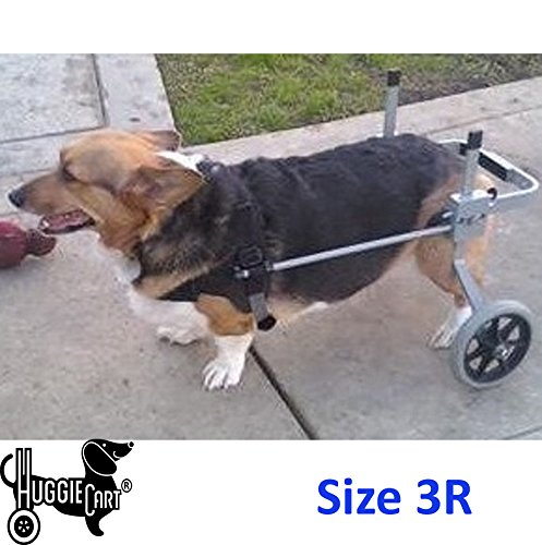 Huggiecart Dog Wheelchair for Dog 3-99 lbs 8 Sizes to Select to Fit Your Dog (3R-Small Regular 20-40 lbs) by Huggiecart