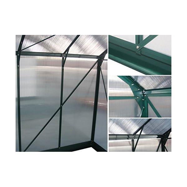 Viva Green 1299_ 69183Dahlia Serra da Giardino policarbonato/Plastica Verde Albero 13,29M² 430x 309x 248cm 5 spesavip