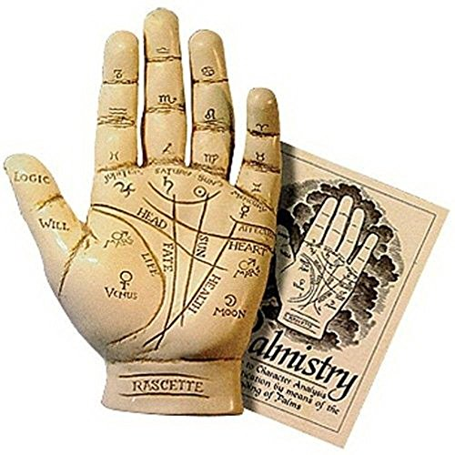 Palmistry Hand Model Resin Sculpture Fortune Telling Palm Reading with Booklet ()