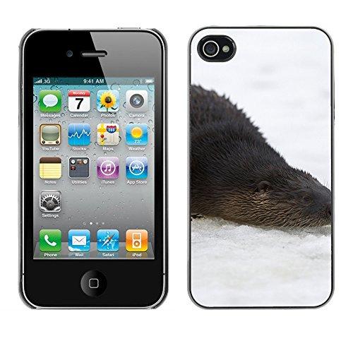 Premio Sottile Slim Cassa Custodia Case Cover Shell // F00013936 loutre // Apple iPhone 4 4S 4G