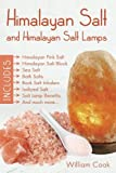 Himalayan Salt and Himalayan Salt Lamps; Himalayan