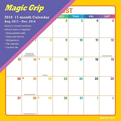 2019 Rainbow Magic Grip Wall Calendar, Office Organizer by Calendar ()