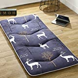 hxxxy Mattress pad Cover, Tatami Floor mat Collapsible Portable Nap mat-F 100x200cm(39x79inch)