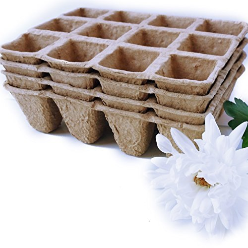 Peat Pots Seed Starter Tray 48 Cells, 1.5inch x 1.5inch in Width, 2inch in Height Plant Nursery Cells by Momentum