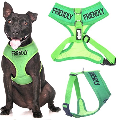 FRIENDLY Green Color Coded Medium Vest Dog Harness (Known As Friendly) PREVENTS Accidents By Warning Others of Your Dog in Advance!