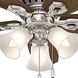 """Hunter 51092 42"""" Builder Low Profile Ceiling Fan"""