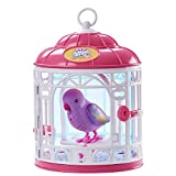 Bird with Cage - Dreamy Genie (Premium pack)