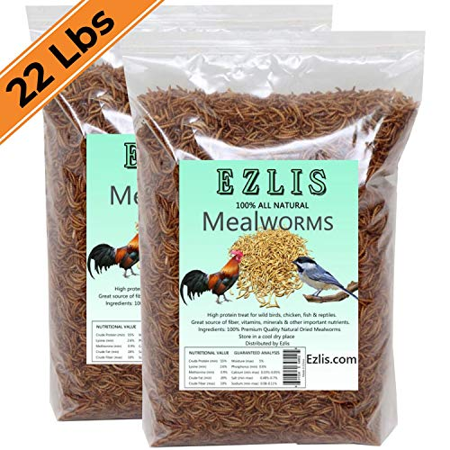Ezlis Dried Mealworms for Chickens 22lbs - Chicken Treats, Duck Feed, Organic Chicken Feed, High-Protein Meal Worms Bulk Food for Chickens, Bluebird Food, Poultry Feed, Hens, Wild Birds, Fish, Turtle