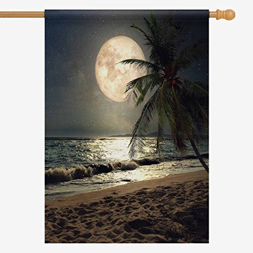 Interestprint Tropical Beach Palm Tree With Full Moon Starry Night House Flag House Banner  Decorative Yard Flag For Wishing Party Home Outdoor Decor  28  X 40   Without Flagpole