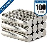 DIYMAG Refrigerator Magnets Premium Brushed Nickel Fridge Magnets, Office Magnets - 12 X 2 mm