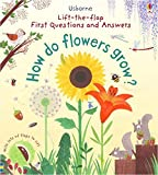 First Lift-the-Flap Questions and Answers How Do Flowers Grow? (Lift-the-Flap First Questions and Answers)