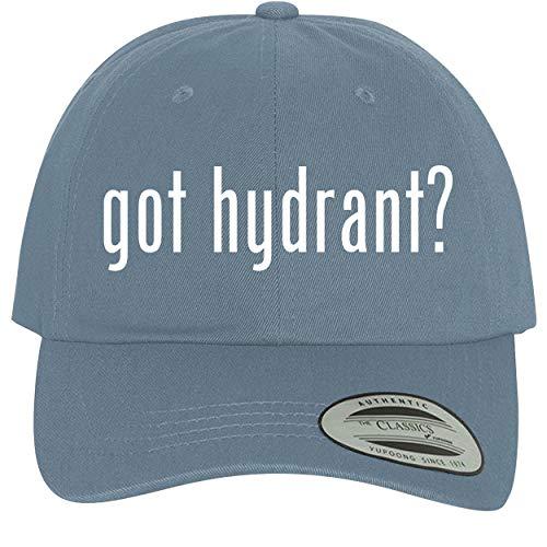 got Hydrant? - Comfortable Dad Hat Baseball Cap, Light Blue ()