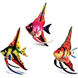 Puzzled Angel Fish High Fin Bobble Magnets (Set of 3)