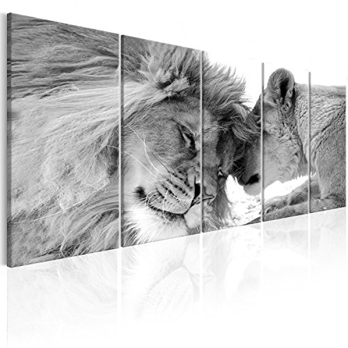 murando - Cuadro en Lienzo Leon 200x80 cm Impresion de 5 Piezas Material Tejido no Tejido Impresion Artistica Imagen Grafica Decoracion de Pared Naturaleza Animal Paisaje g-B-0061-b-p