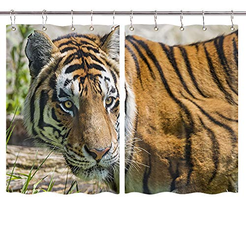 Tiger Kitchen Curtains, Wildlife Hunting in Country Forest Park Window Curtain Panels, Waterproof Wild Animals Safari Kitchen Drapes 10PCS Hooks 55X39 in Valance
