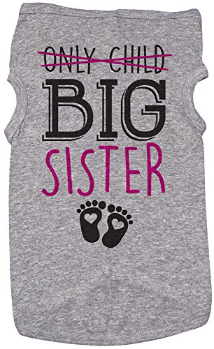 Big Sis Shirt for Dogs/ONLY Child, Big Sister/Grey Puppy Tee (Medium) (Going To Be A Big Sister Dog Shirt)