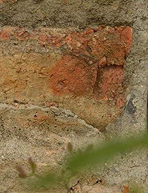 BINOTA Concrete Hole Saw SDS Plus Shank for Cement Brick Wall, Kit 30 40 65 80 100 mm (Color: KIT, Tamaño: Kit 30/40/65/80/100 mm)