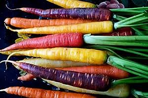 Organic Rainbow Blend Carrot 150 Seeds Heirloom Non-gmo Rare Healthy Flavorful