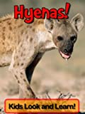 Hyenas! Learn About Hyenas and Enjoy Colorful Pictures - Look and Learn! (50+ Photos of Hyenas)