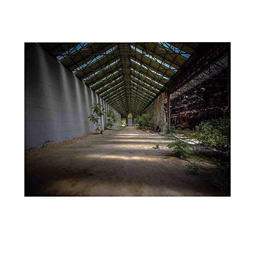 Rustic Photography Background,Industrial Interior Greenhouse Agriculture and Plants Nature in Urban Areas Print Decorative Backdrop for Studio,5x3ft ()