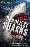 Top 10 Deadliest Sharks, Joe Brusha, 0982750722