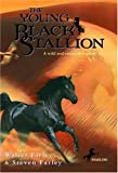 The Young Black Stallion, Walter Farley and Steven Farley, 0679813489