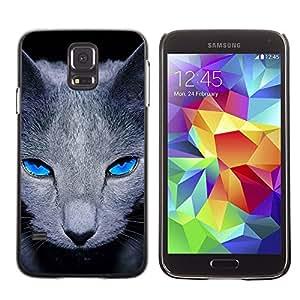 Stuss Case / Funda Carcasa protectora - Grey British Shorthair Cat Pet Blue Eyes - Samsung Galaxy S5 SM-G900