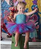 Fairy Abby Gadabby Costume Tutu Dress/Headband/ Wings from Chunks of Charm