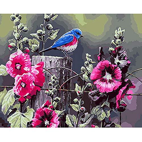 CZYYOU DIY Malen Nach Zahlen Malen Nach Zahlen Für Wohnkultur Für Wohnzimmer Roomorning Glory Und Vogel, Mit Rahmen, 50x60cm B07Q2YHLZ6   Sale