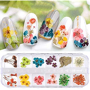 Lazinem 3D Nail Art Mixed Dried Flowers DIY Nail Art Decorations Accessories Nail Art Equipment