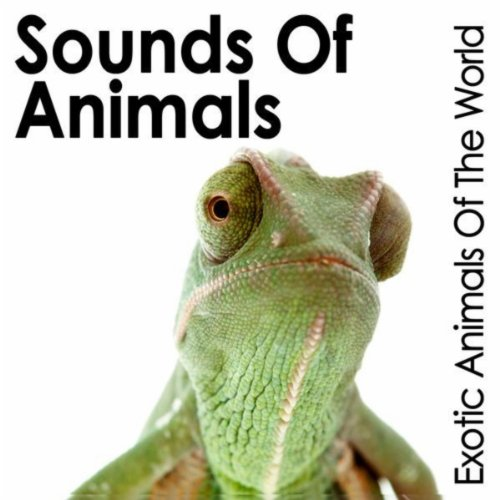 Effects Sound International Library (Sounds of Animals: Exotic Animals of the World)