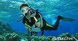 Nokta PulseDive Underwater Metal Detector